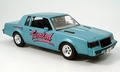 Drag Race Buick gRAND nAT Limited Edition   1/18