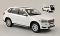 BMW X5  wit  white  2013 1/43