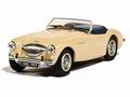 Austin Healey 100 BN1 Beige Cabrio 1/43
