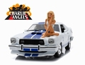 Ford Mustang 1976 Cobar II Wit Blauw  White Blue 1/18