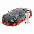 Bugatti Veyron Super sports Zwart- Oranje Black-Orange 1/18