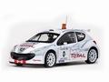 Peugeot  207 S2000 #0 Rallye Antibes-Cote d'Azur 2006 1/18