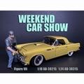 Weekend car show VII 1/24