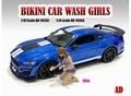 Bikini car wash Alisa 1/24